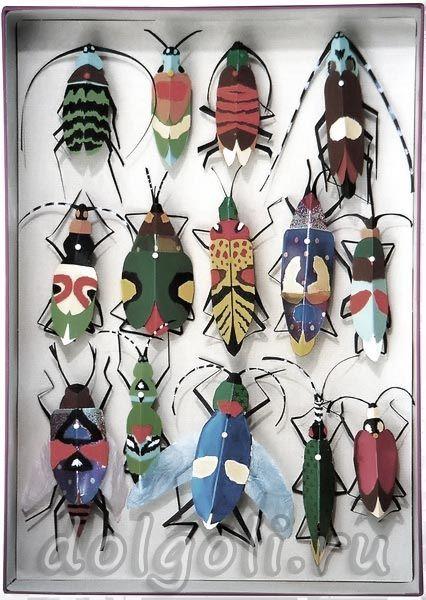 Жуки в деревянном доме 59