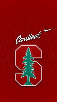 Stanford Cardinal Png Stanford Cardinal Football Stanford Football Stanford Cardinal