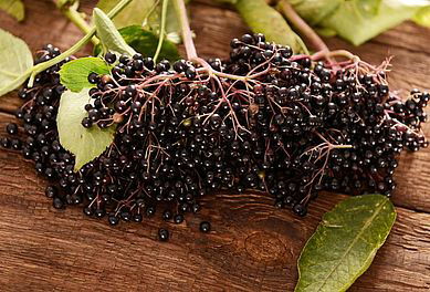 Owoce Czarnego Bzu To Kopalnia Antyoksydantow C Fotolia Kwasny221 Meat Jerky Product Launch Meat