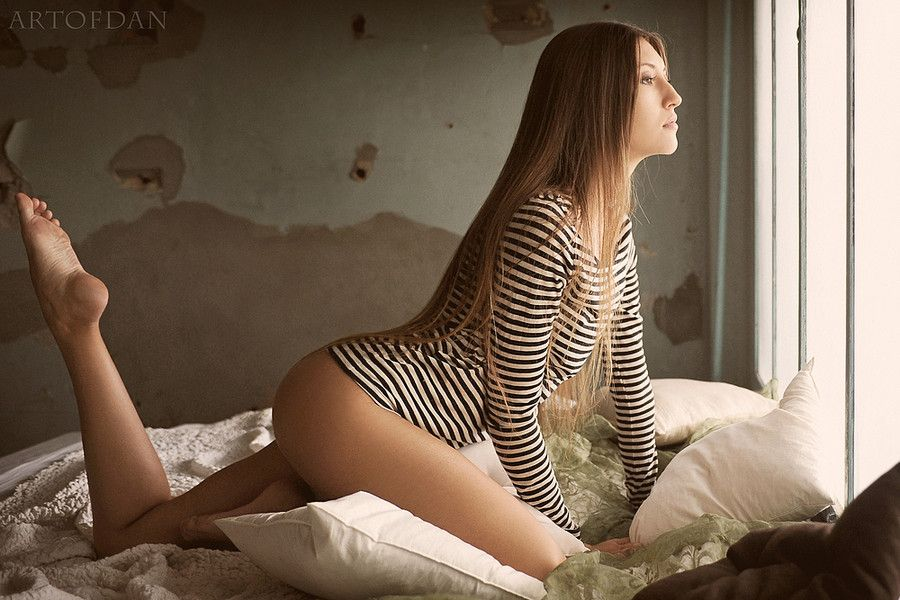 zebra by artofdan photography on 500px