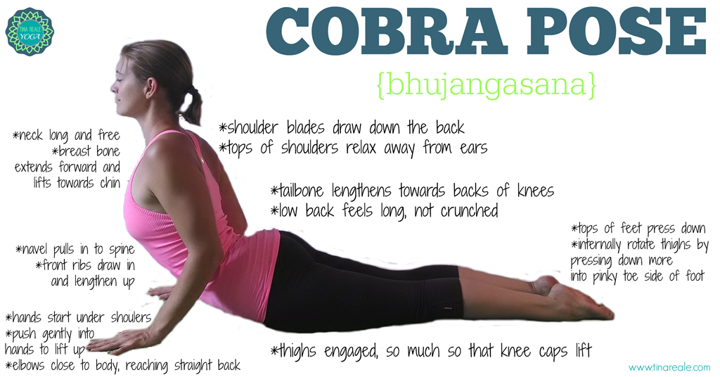 Benefits of Cobra Pose (Bhujangasana) | yoga
