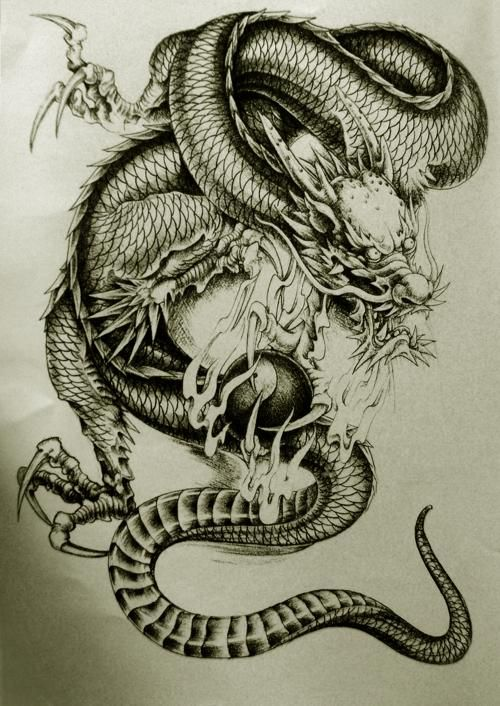 Pin By Stephen Schuerger On Dragons Japanese Tattoo Tattoos Gallery Japanese Tattoo Art