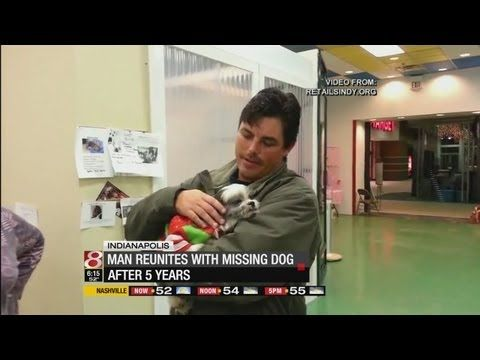 Man reunited with dog after 5 years