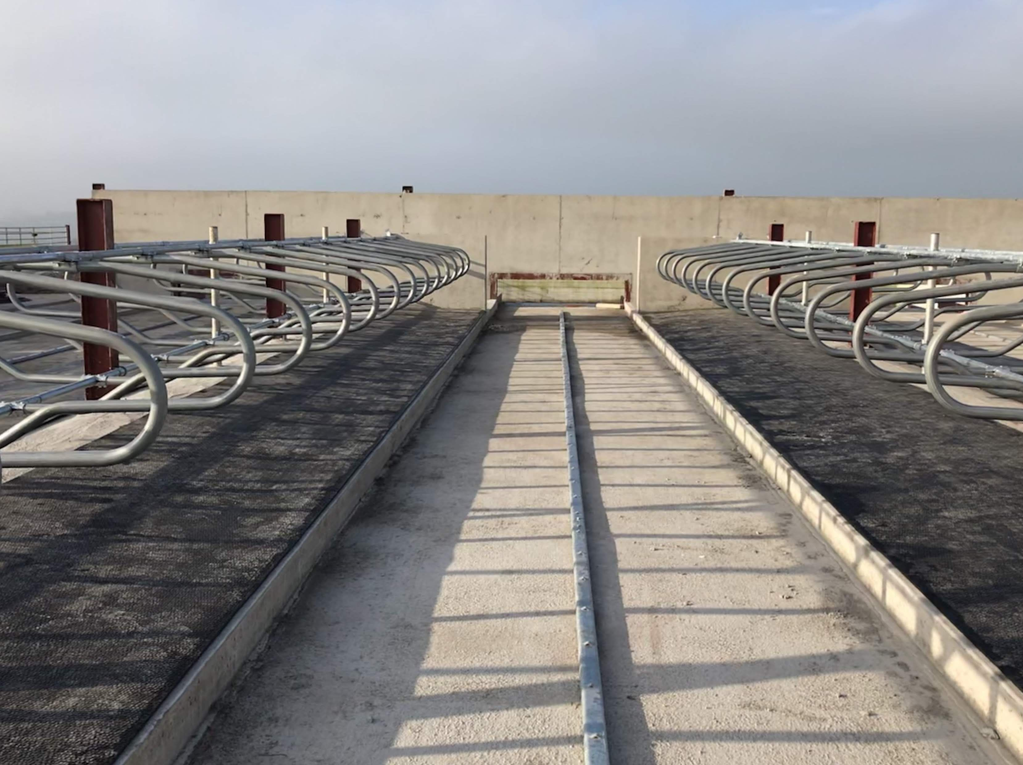 Super Loop Cubicles O Donovan Engineering Cantilever Cow Cubicles Cow Shed Design Cattle Barn Designs Cow Shed