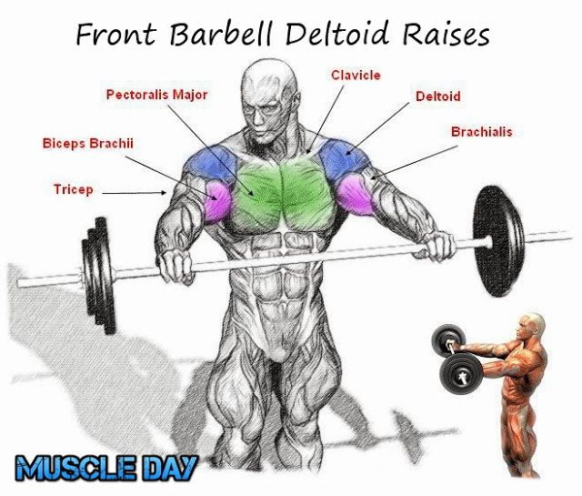 Dumbbell Chest Workouts For Men