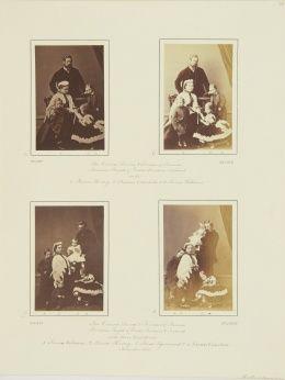 Nov 1865