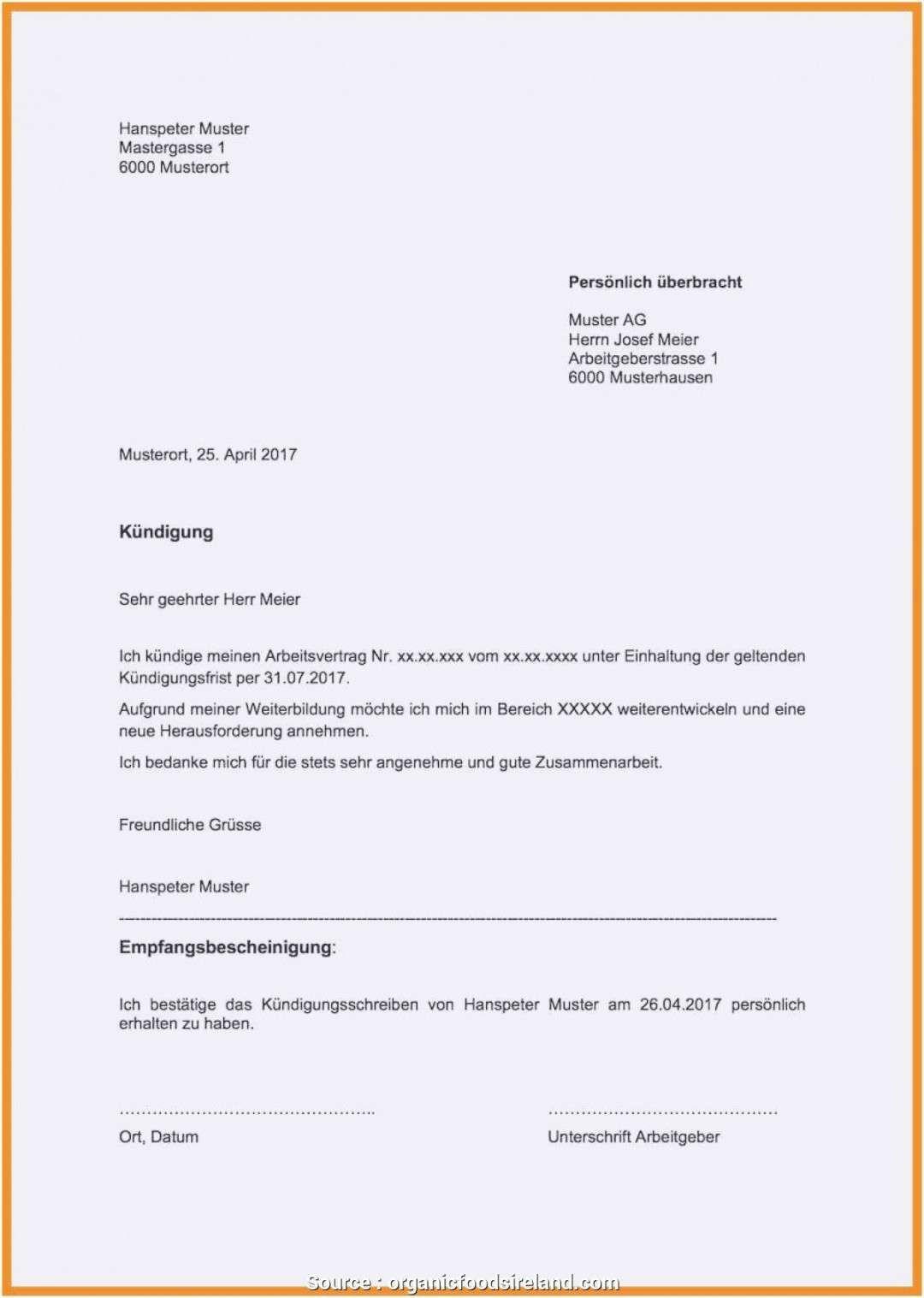 Kundigung Haftpflichtversicherung Vorlage Zum Download