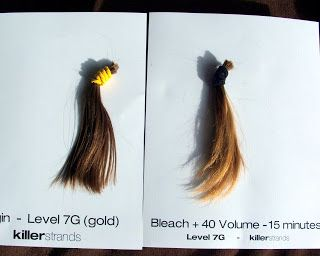 The Bleach Boys: 8 Hair Swatches Lightened for Learning | Wella ...