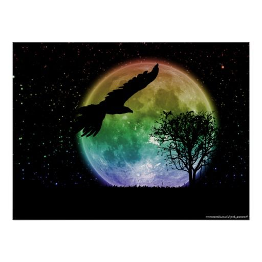 Night Flight Print - Silhouette of an eagle against a low full moon on a clear star filled night sky with a tree in the distance.
