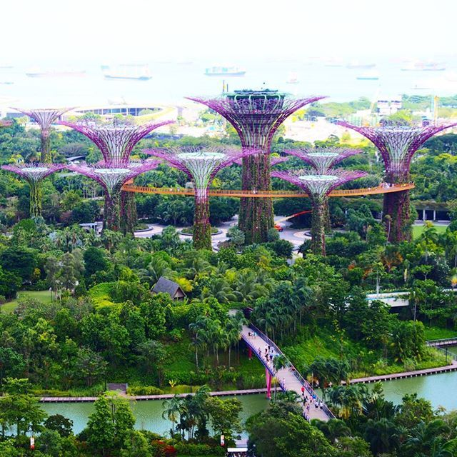 782efde39354c5ef100496eb6702311d - Gardens By The Bay East Singapore
