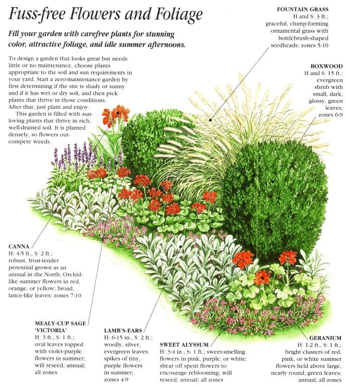 Zero maintenance garden design for the front walkway for Low maintenance perennials zone 4
