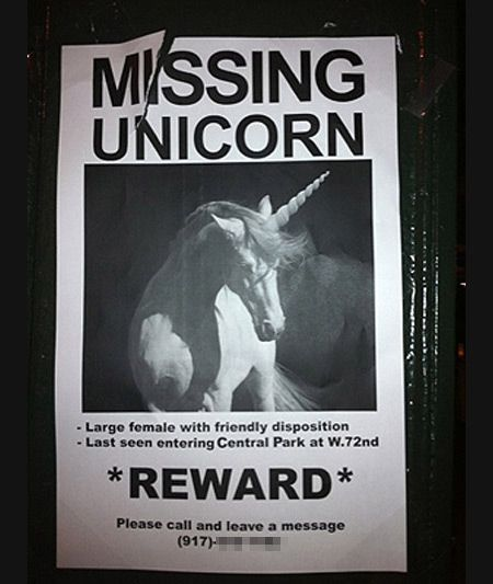 12 Funniest Lost \ Found Pet Signs - lost signs, pet signs - lost pet poster