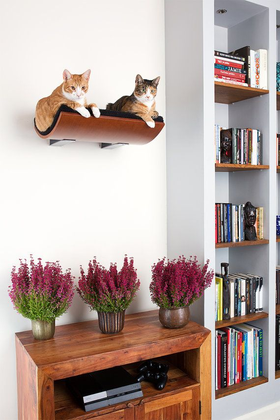 wall mounted cat furniture.  Mounted Cat Bed Wall Mounted Cat Shelf Furniture Cats Por CosyAndDozy With Wall Mounted Furniture