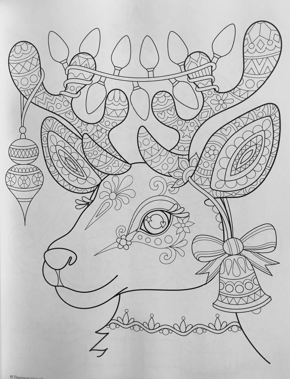 Christmas Coloring Book (Coloring Is Fun): Thaneeya McArdle ...
