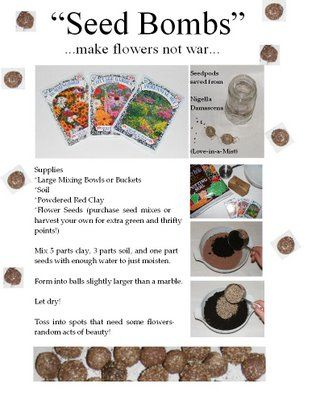 I love the idea of seed bombing and this blog has a bunch of