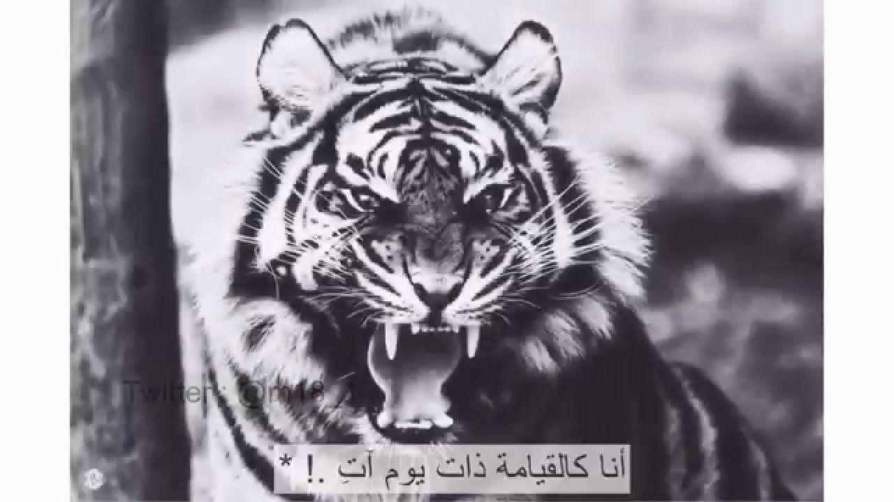 أتظن أنك عندمـــا أحـــرقتنــي ورقصت كالشيطان فوق رفاتي وتركتنـــي للذاريــات تـذر نــي كحلا لعين الشمس في الفلـوات أتظـن أنك قـد طــمست هويتي و Animals Muslim