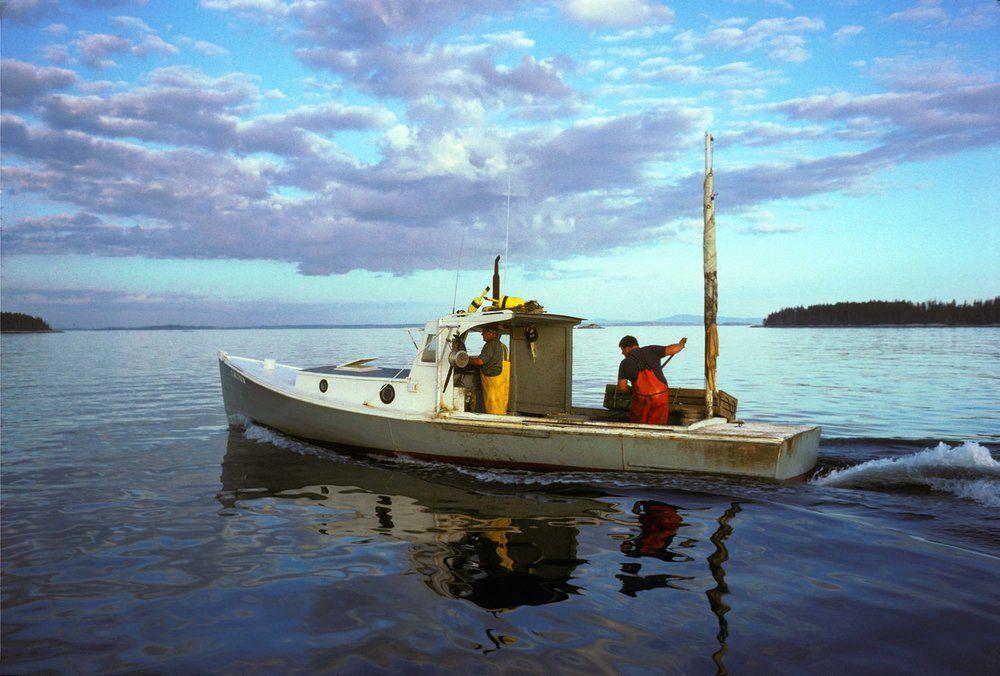 Sea Bugs Boat, Fishing boats, Boat painting