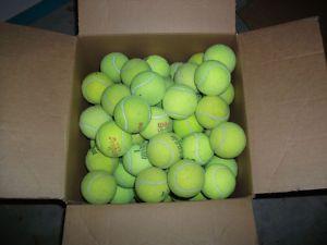 Lot 100 Used Tennis Balls Dog Toys Classroom Supplies Penn Wilson Dunlop Tennis Balls Tennis Dog Toys
