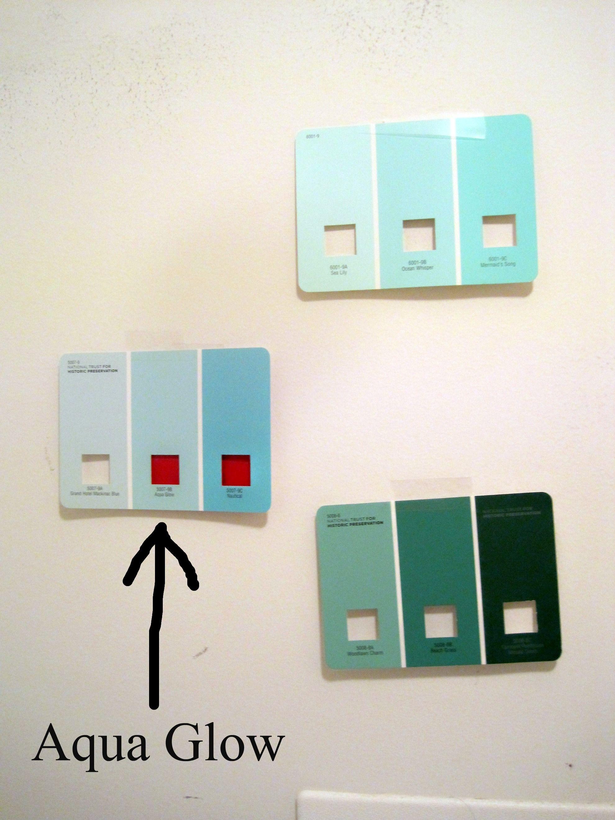 Aqua Paint Chips