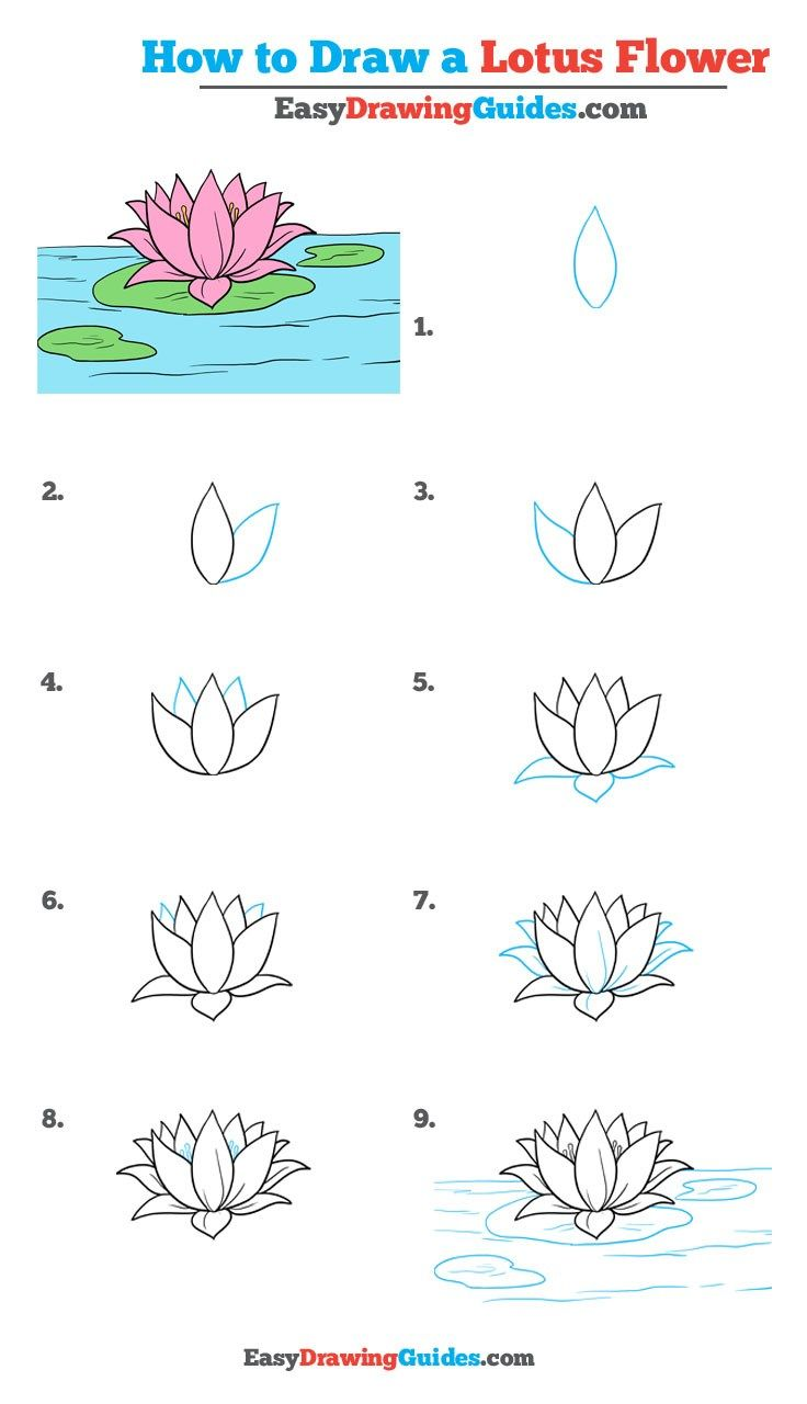 How to draw a lotus flower really easy drawing tutorial buju for