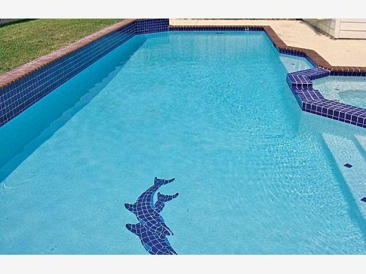 Pool Mosaics - Home and Garden Design Idea's