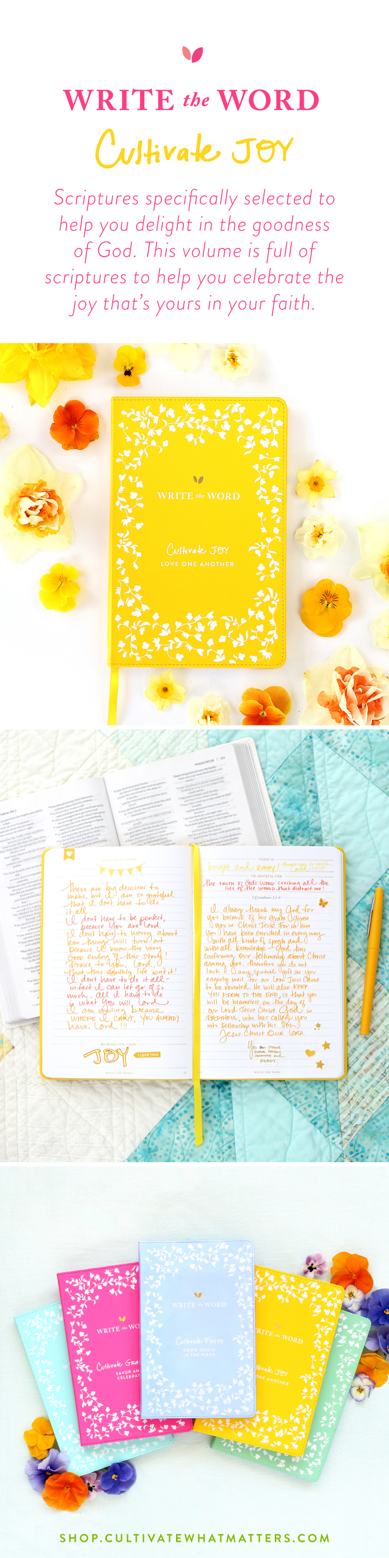 learn to dig into gods word through the prompted write the word journals