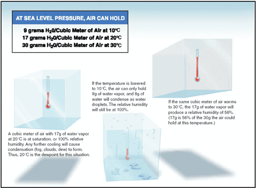 Understanding Dew Point And Relative Humidity Aviation Aviation Education Weather
