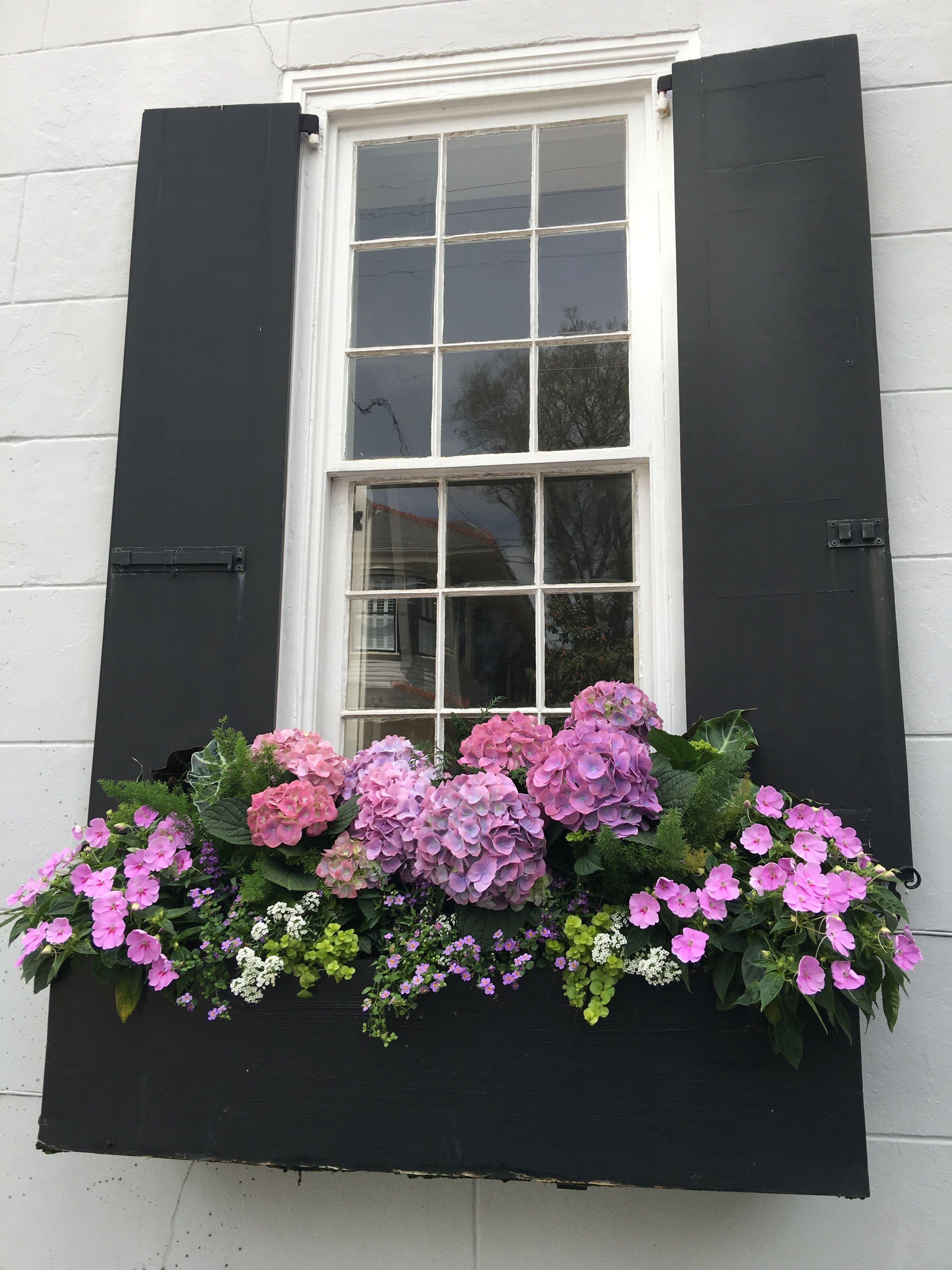 Charleston window box | Window Boxes | Pinterest | Balkon, Fenster ...