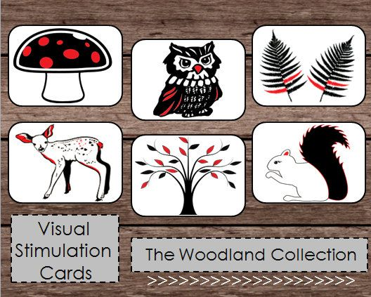 Black White Red High Contrast Baby Flash Cards Etsy