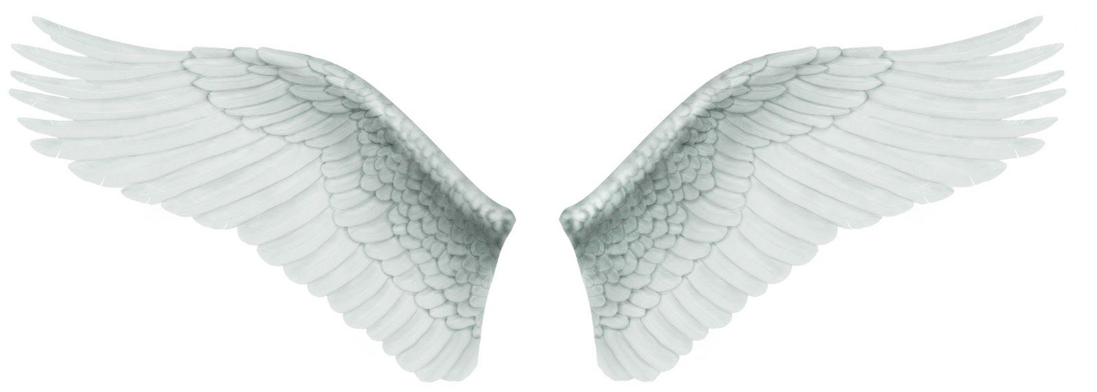 Angel Wings Graphics - Yahoo Image Search Results | angel wings 1 ...