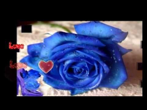 'Til a Tear Becomes a Rose