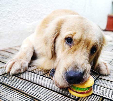 FiveSeasonStuff® Hund & Katze Glitschige Hamburger