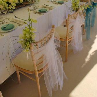 Chiavari Chair Clear Wedding Google Search Wedding Chairs Wedding Chair Decorations Wedding Chair Hire