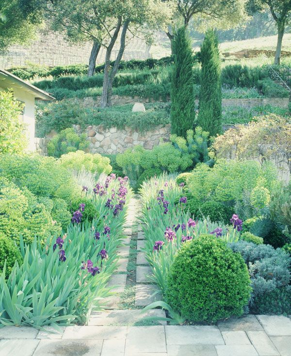 Nancy Goslee Power Garden Design   Google Search