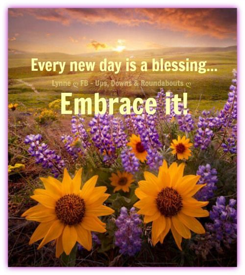 Inspirational Day Quotes: Every New Day Is A Blessing... Embrace It!
