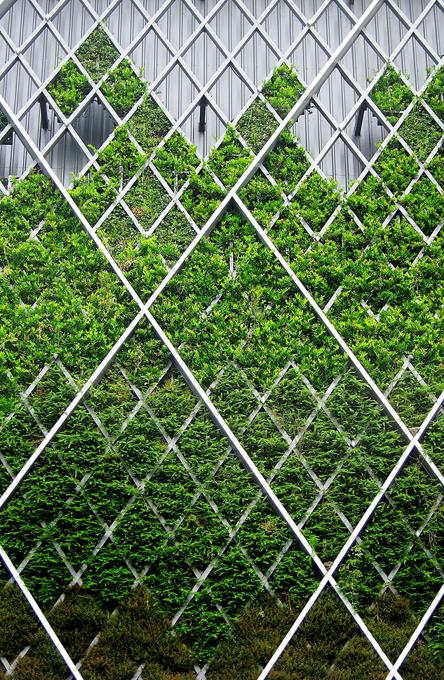 Indigo Crossing Vertical Garden Green Architecture Green Facade