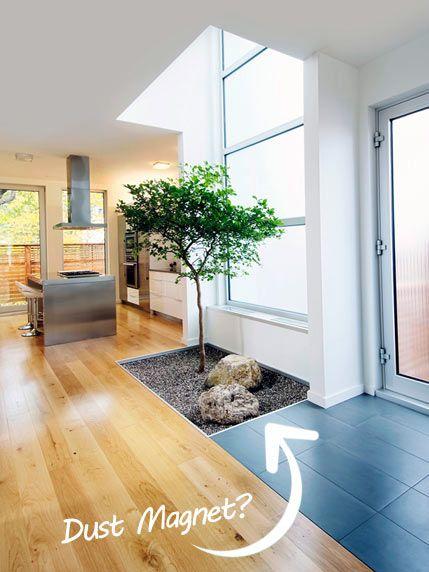 House Tree Indoor Courtyard Interior Garden Indoor Trees