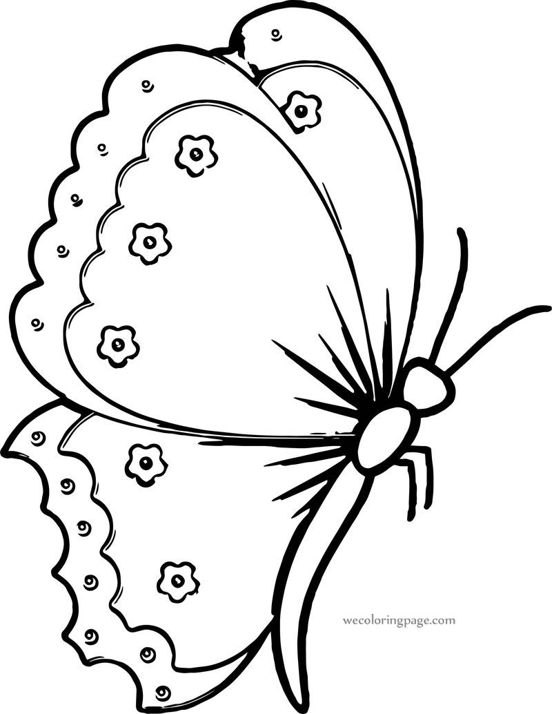 Flower Butterfly Coloring Page Butterfly Coloring Page Bird Coloring Pages Flower Coloring Pages [ 1034 x 800 Pixel ]