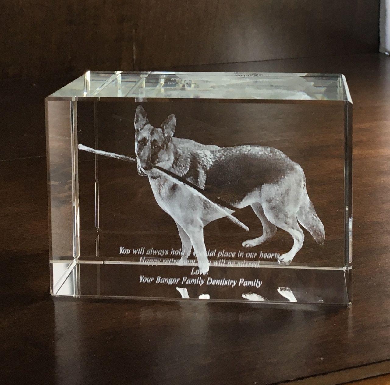 Pet Memorial Rectangular 3d Crystal Block Pet Memorials 3d Crystal 3d Laser Gifts