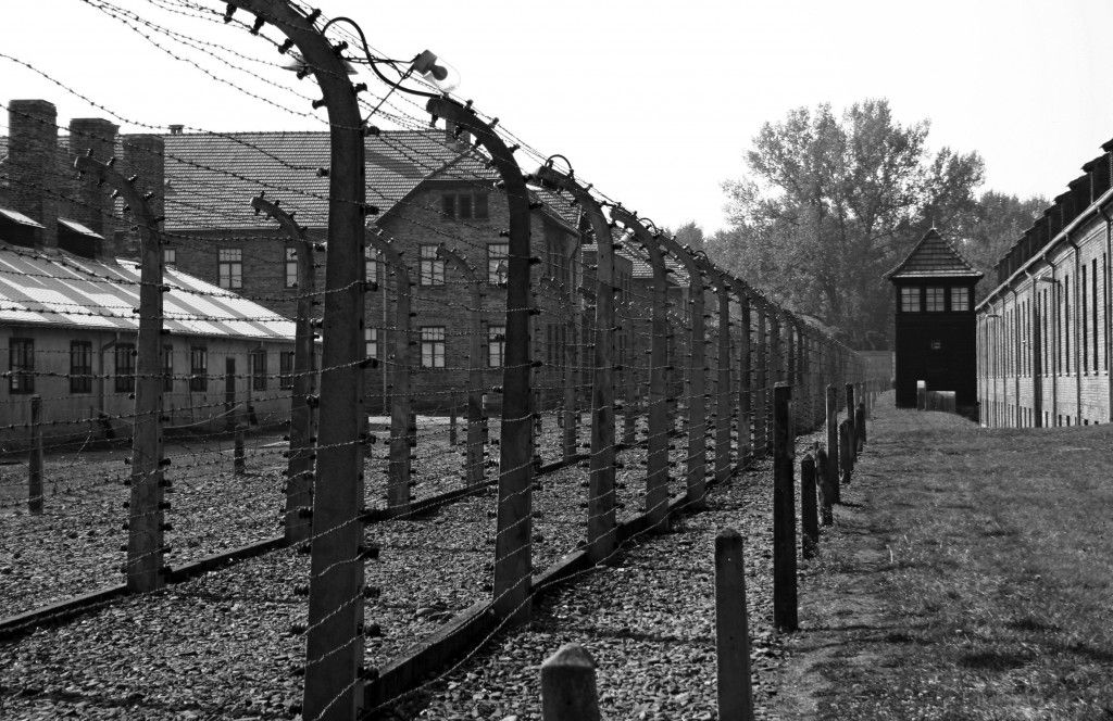 the holocaust concentration camps - Google Search | The Holocaust ...