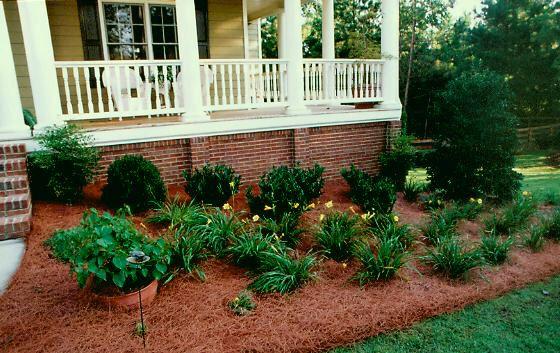 783800c502f93015b4349c9fc0d04b41 - Are Pine Needles Good For Gardens