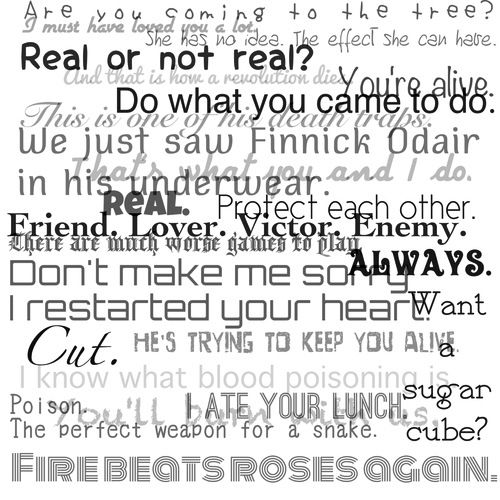 Hunger Games quote collage