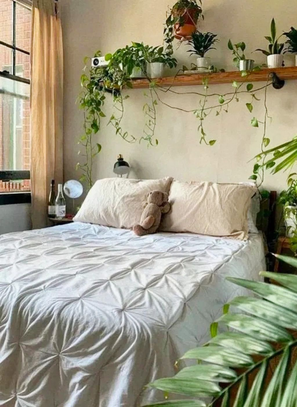 Would you like to remodel your room on a low budget? Then you must enter whatforme.com, where you will find the best reviews of household products. You will get the best products at the best price.• • • • • #garden #gardening #plants #flower #jardin #mygarden #plant #succulent #succulents #instagarden #garten #gardens #flowerstagram #cactus