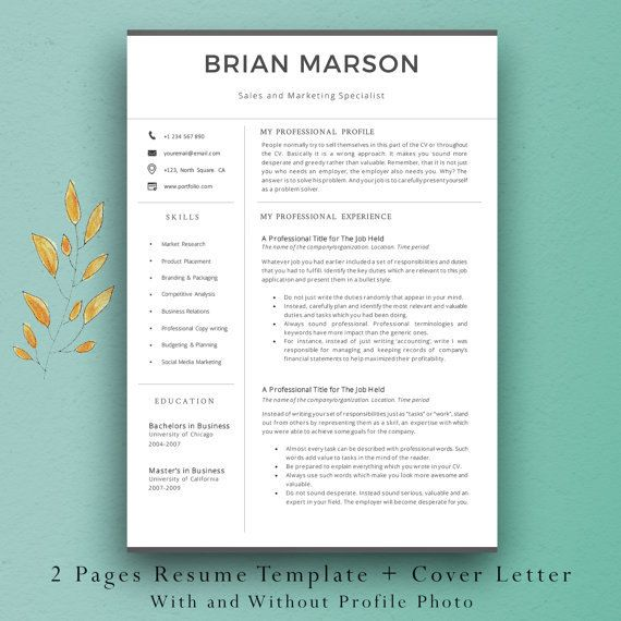 Resume Template Professional CV Template Easy to Edit 2 Pages - pages resume template