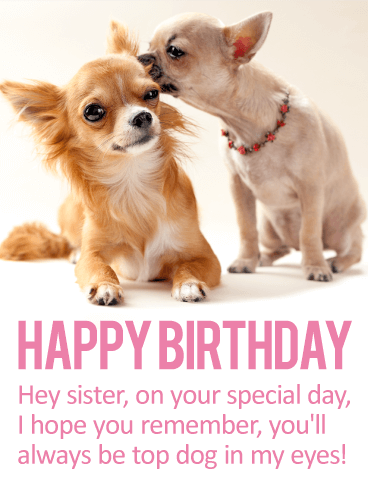 Youll Always Be Top Dog Happy Birthday Card For Sister These