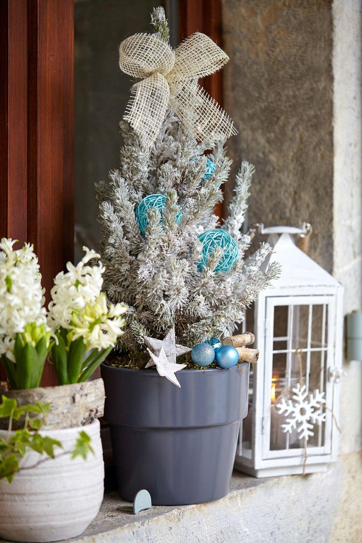 Www inspiration jardin enneig - Decoration sapin enneige ...