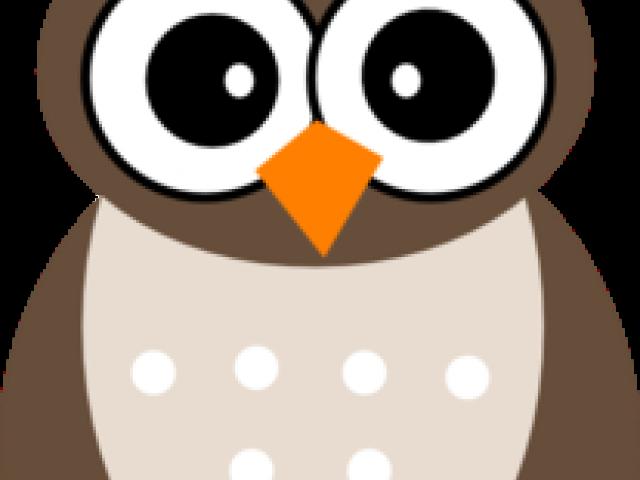 10 Mewarnai Gambar Burung Hantu Cartoon Owl Drawing Owl Cartoon Owls Drawing