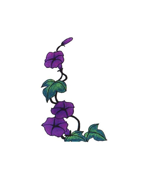 cross contour flower drawing further purple flower vine ...