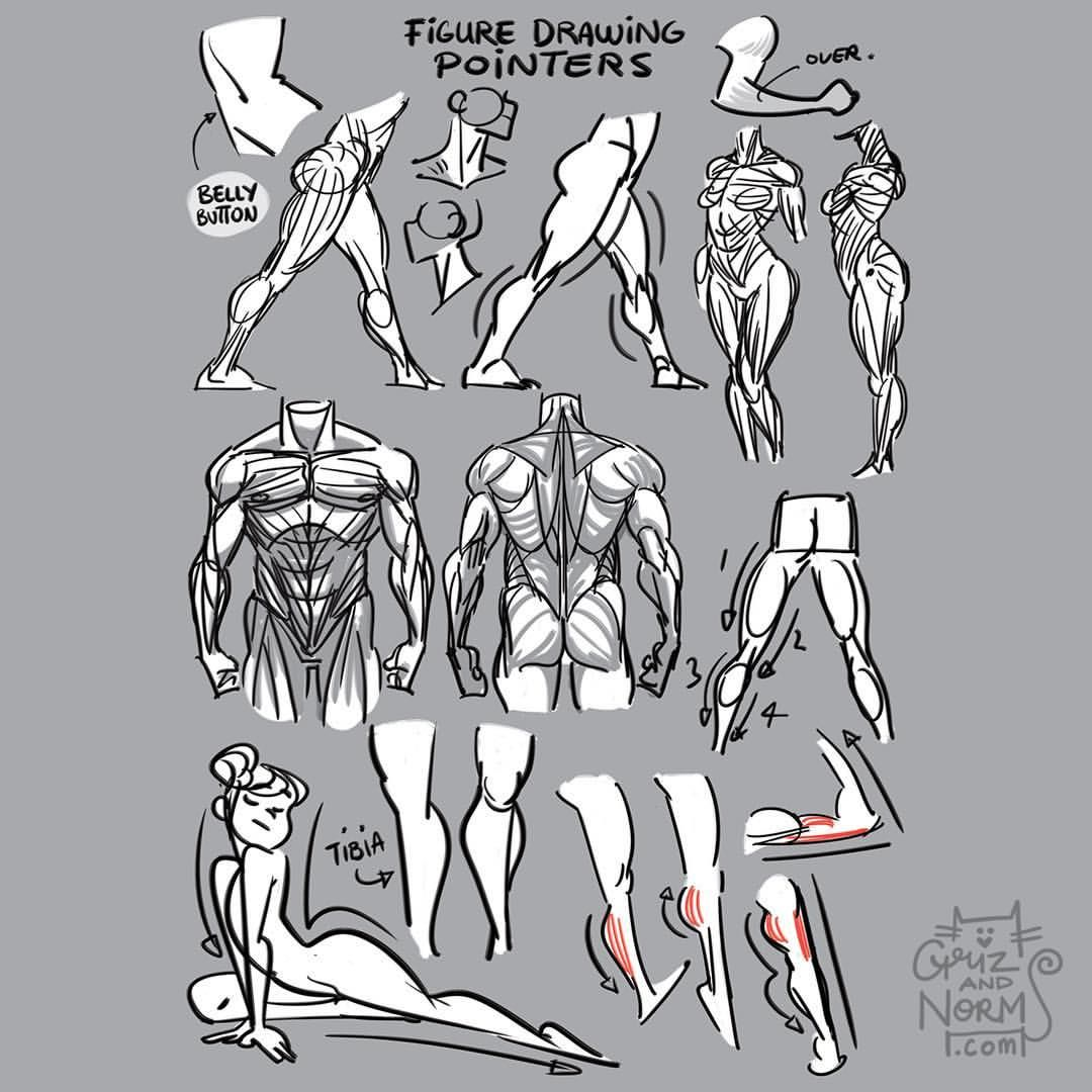 Tuesday Tips - Figure Drawing Pointers A few things I keep in mind while I'm figure drawing. From small details that suggest form and volume to larger concepts like silhouette, direction and tension. #lifedrawing #figuredrawing #grizandnorm #norm #tuesdaytips