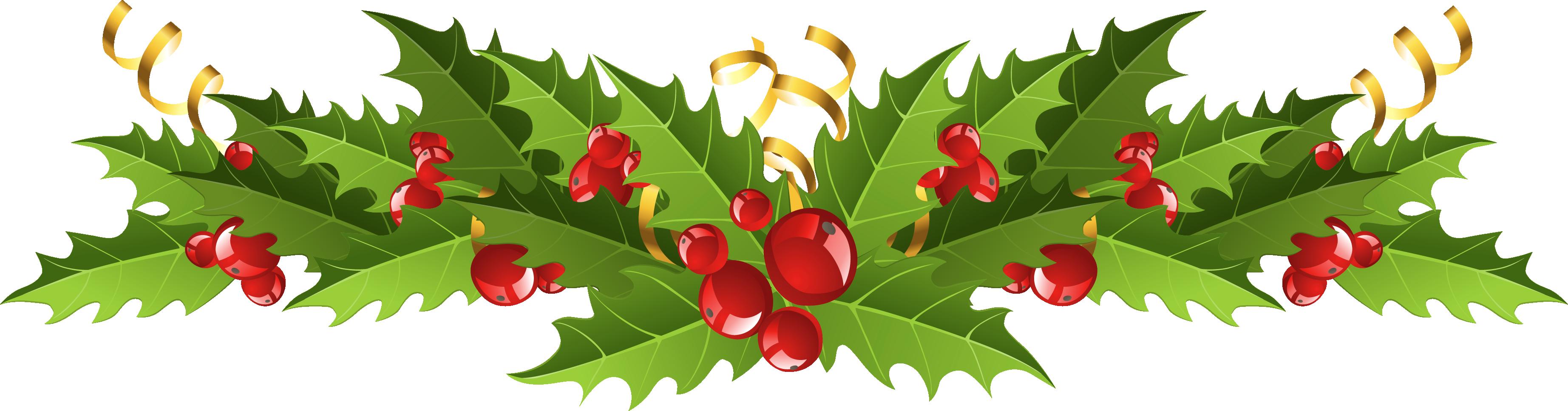 Transparent Christmas Mistletoe Decor Png Picture Diy Christmas Tree Ornaments Christmas Tree Clipart Christmas Wallpaper